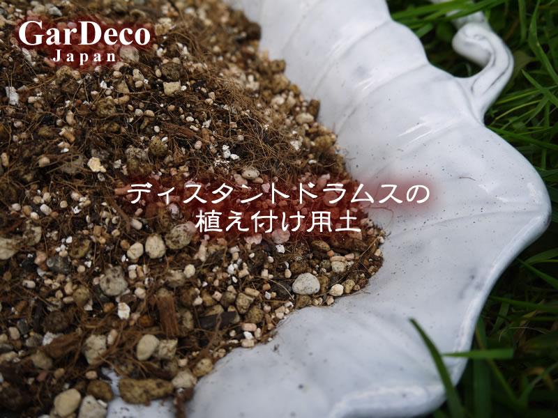 ディスタントドラムスの植え付け用土